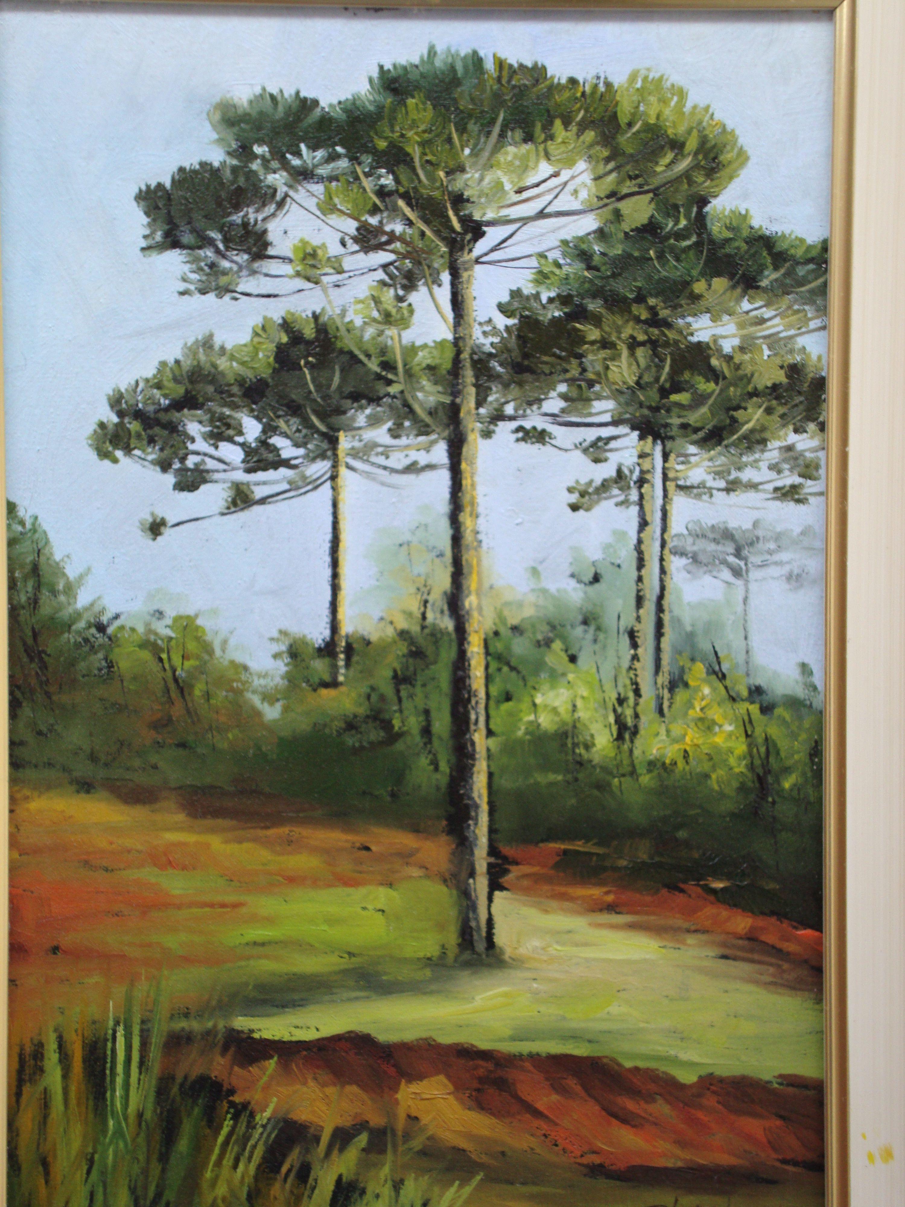 Pinheiros Imagens Fantasticas Pinturas Paisagens Pintura Em