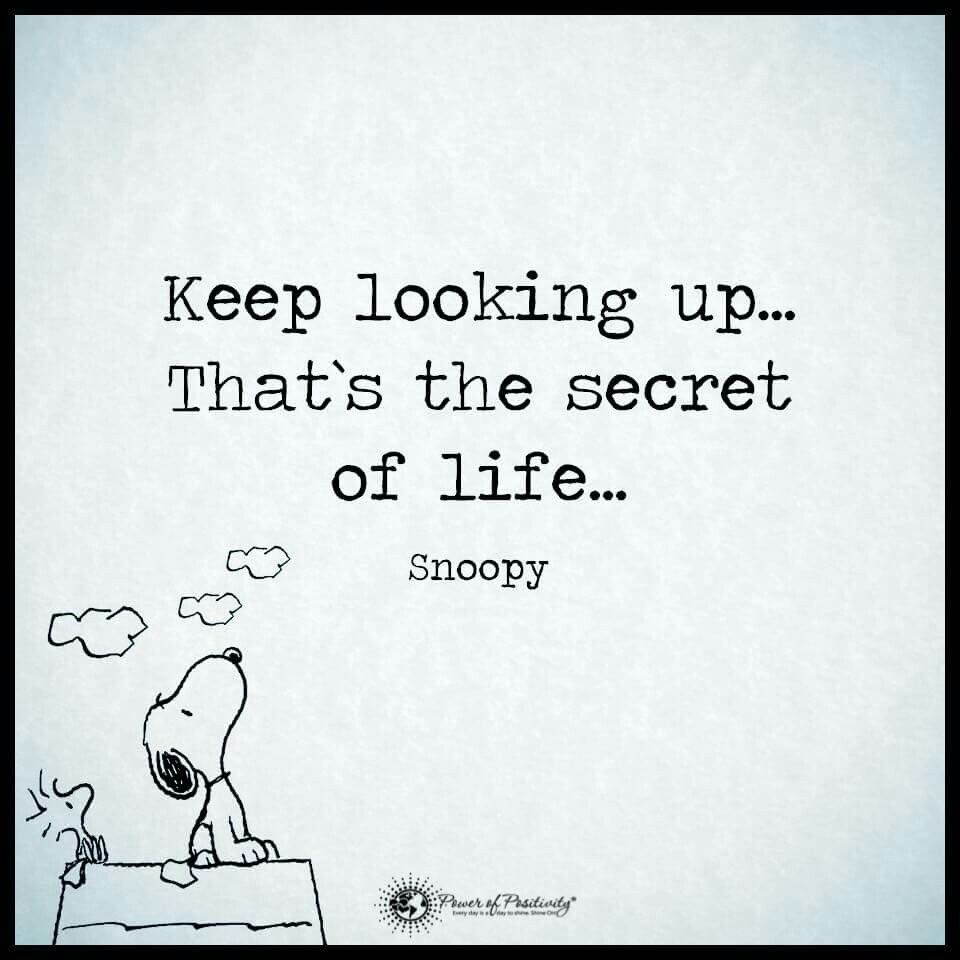 Pin By Linda Sasso Maloy On Snoopy Look Up Quotes Inspirational Quotes Up Quotes