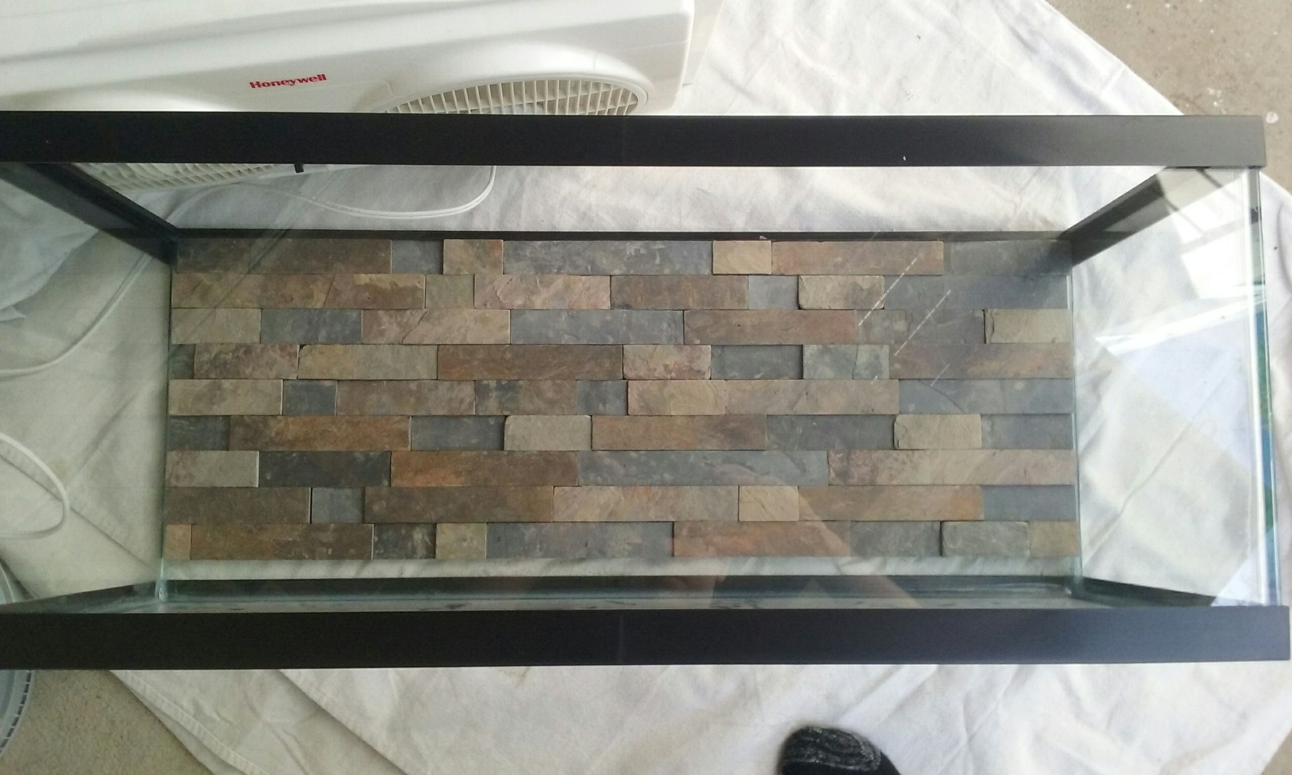 Just a teaser of my diy hand cut slate tile background on my soon to just a teaser of my diy hand cut slate tile background on my soon to be divided 20 gal planted betta tank full album to come once its all set up solutioingenieria Image collections