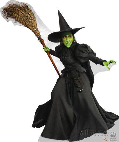 Wicked Witch Broom Halloween Costume Fancy Dress