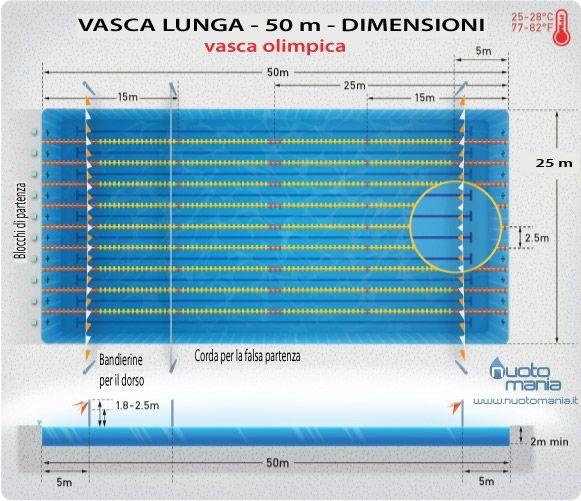 Dimensioni e propriet di un vasca regolamentare danza pinterest - Dimensioni piscina ...