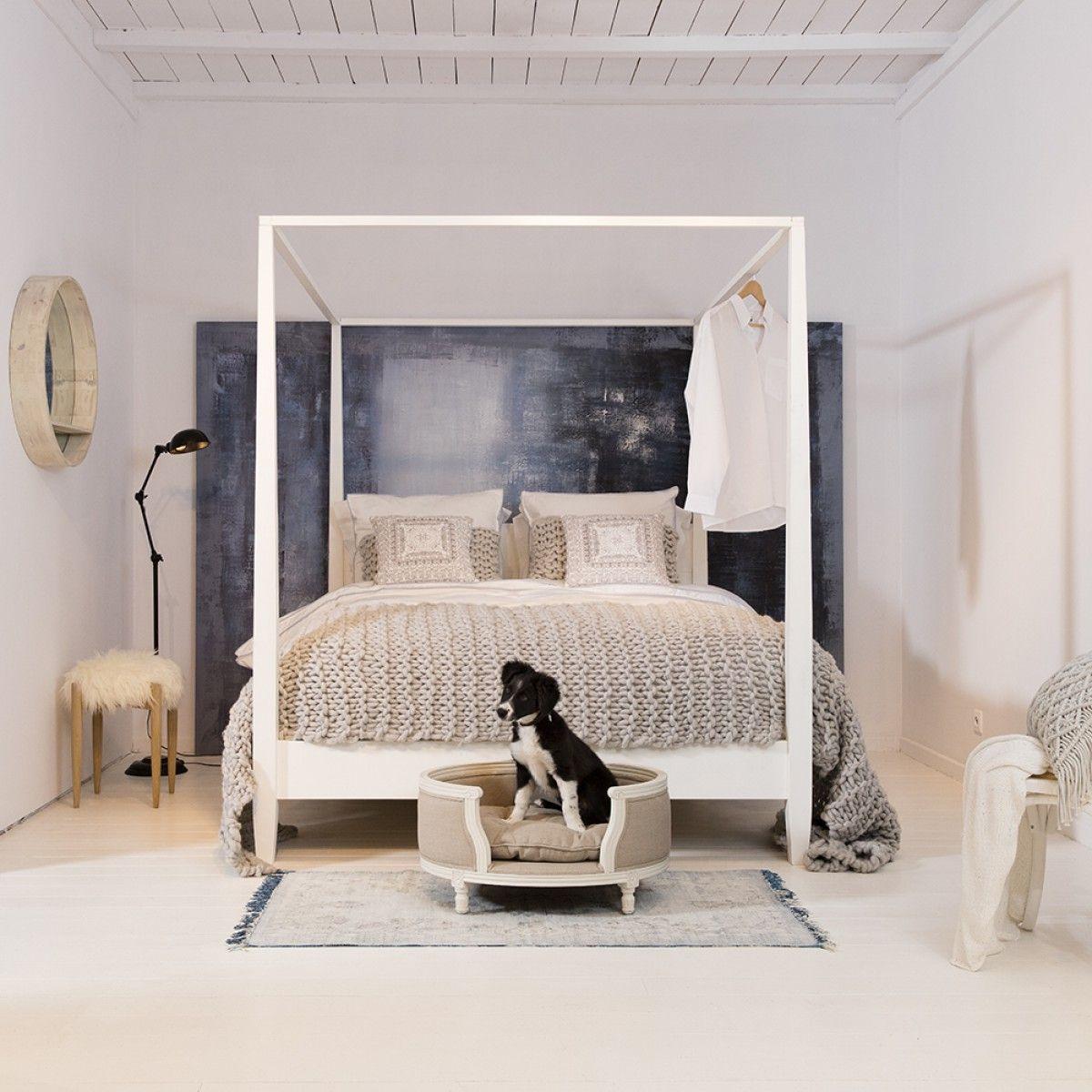 Ein Traumschlafzimmer für jeden Hundebesitzer | Trendy Produkte ...