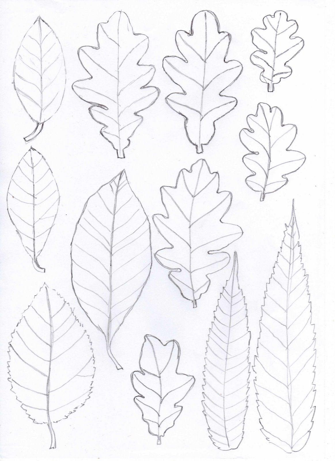 Pin de eonwe en printables   Pinterest   Hoja, Plantillas de papel y ...