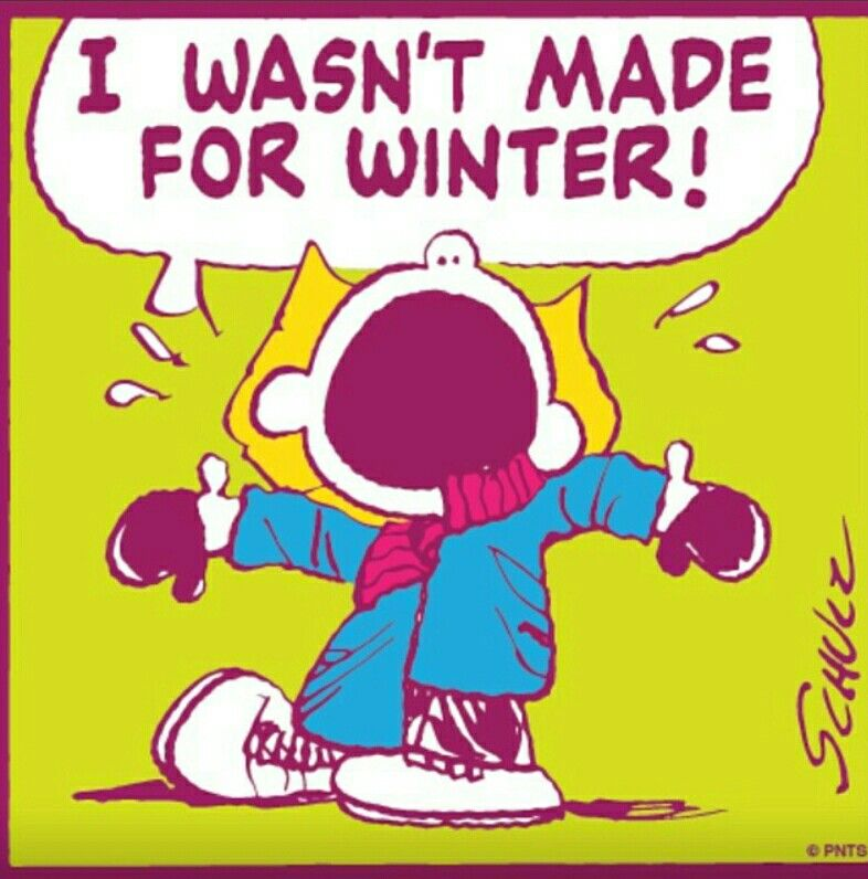 Not Made For Winter =-)