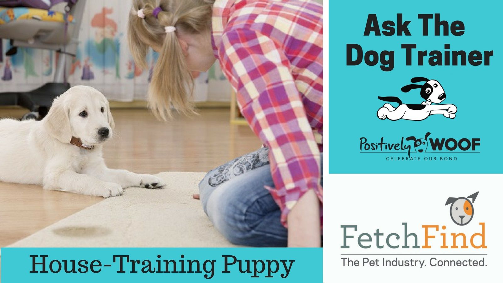 Ask The Dog Trainer How Can I Potty Train My Puppy Dog Trainer