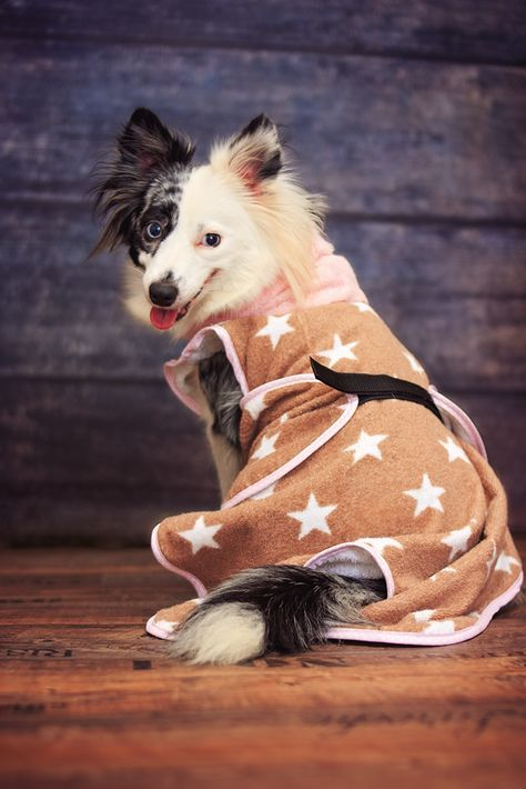 Hundebademantel | DIY Hund | Pinterest | Hunde, Hunde accessoires ...