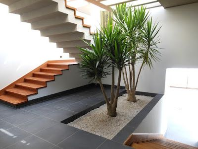 Escalera madera, zoclo, jardinera Architecture and Interior