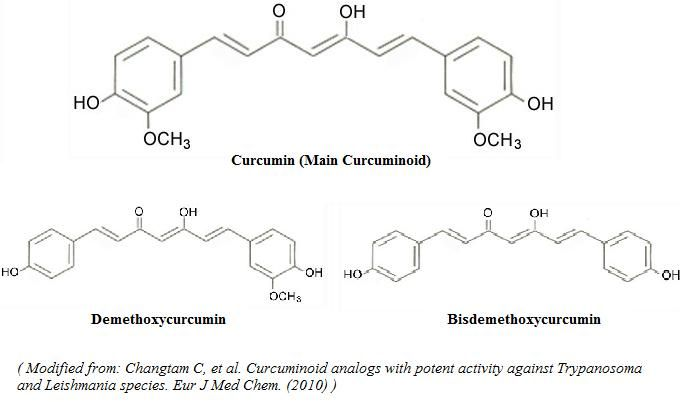 La curcumina - Revisión Científica en el uso, dosis, los efectos secundarios |  Examine.com