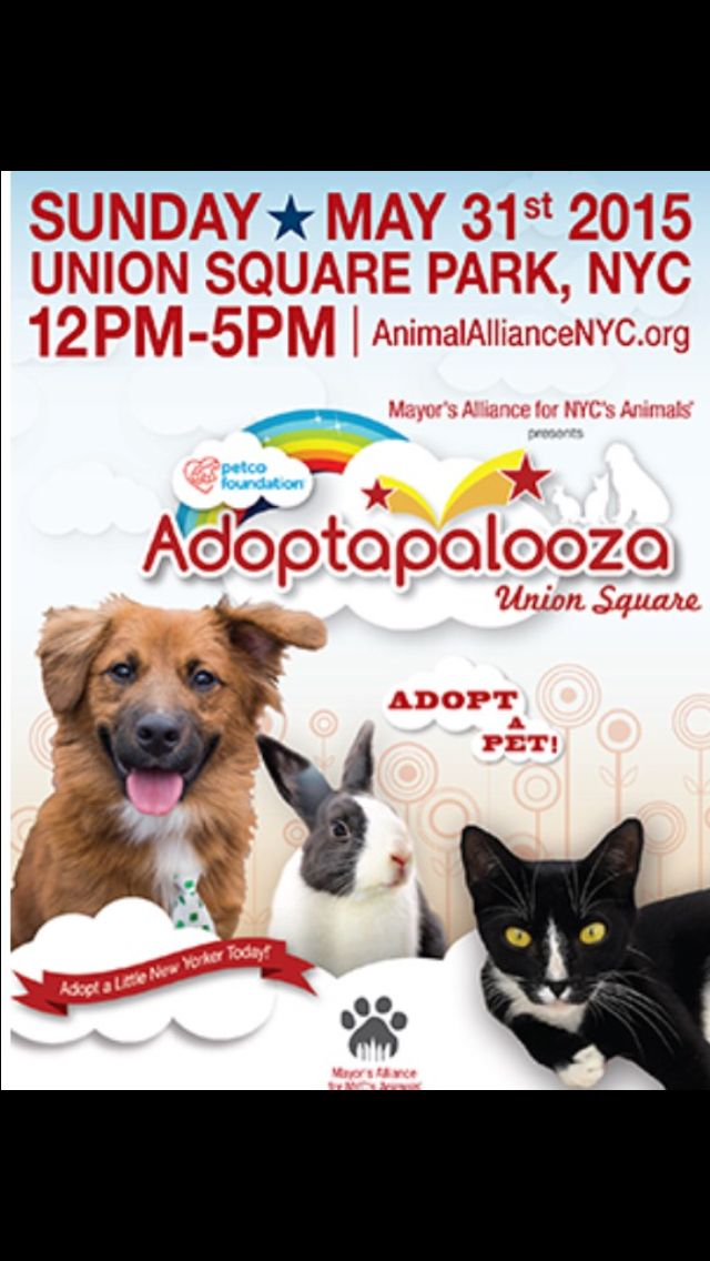 Head out today to #UnionSquare for #Adoptapalooza! Over 300 cats, dogs, and rabbits up for adoption from 40 different shelters. #adopt #adoptdontshop #NYC