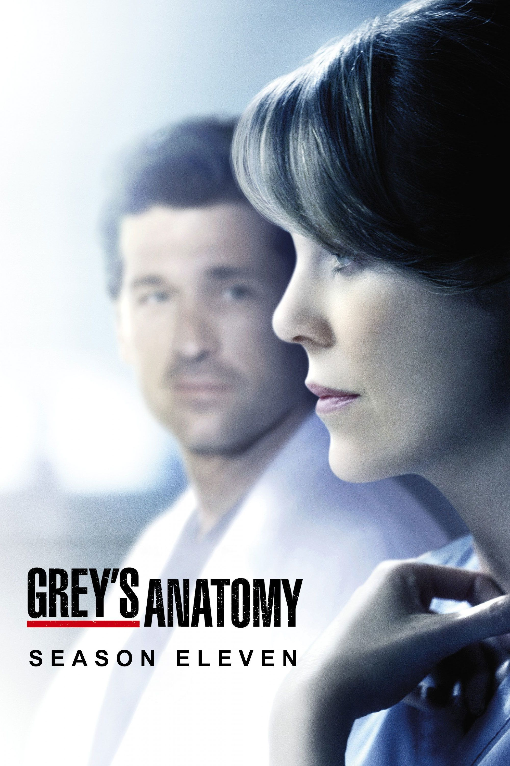 Pin by Ida on Grays anatomy | Pinterest | Anatomy, Grays anatomy and ...