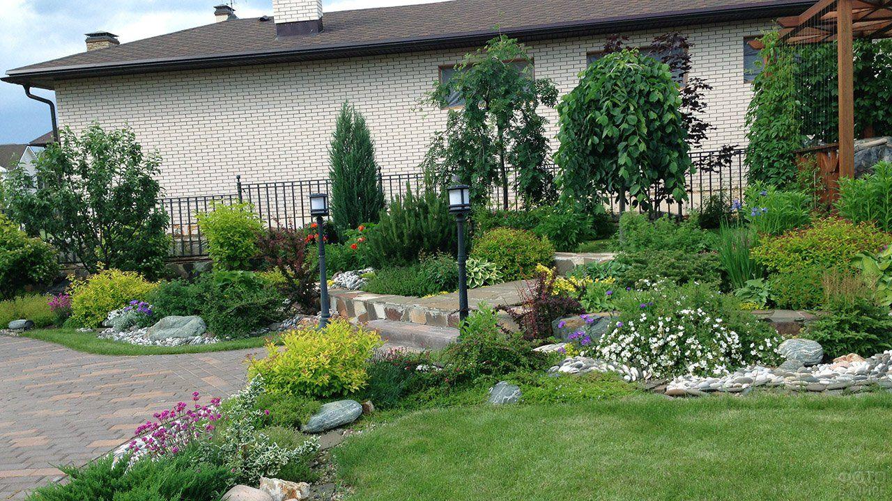 Оформление сада (47 фото) в 2020 г | Кустарники ...