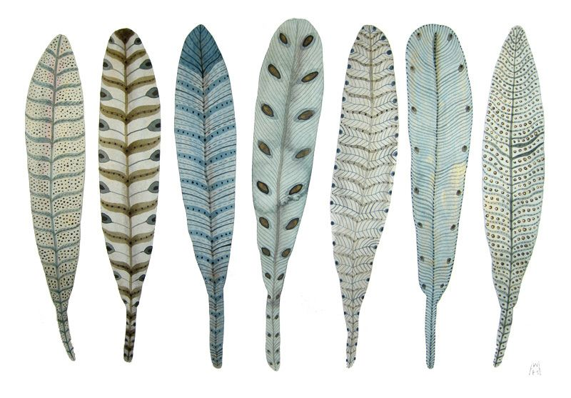 https://flic.kr/p/8M8HYG | fanciful feather collection no. 3