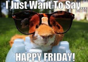 Friday Feeling Quotes Meme Pictures And Gifs Its Friday Quotes Happy Friday Humour Good Morning Happy Friday