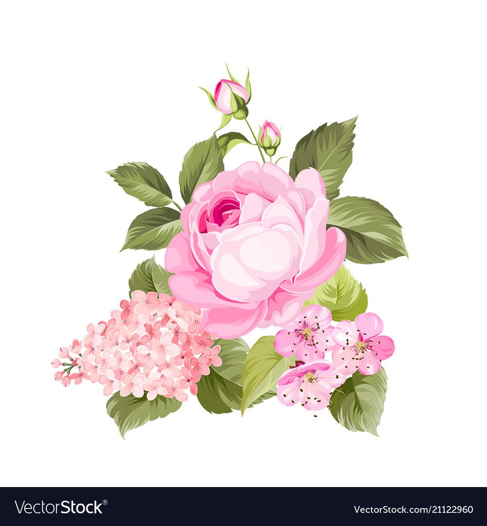 Spring flowers bouquet vector image on