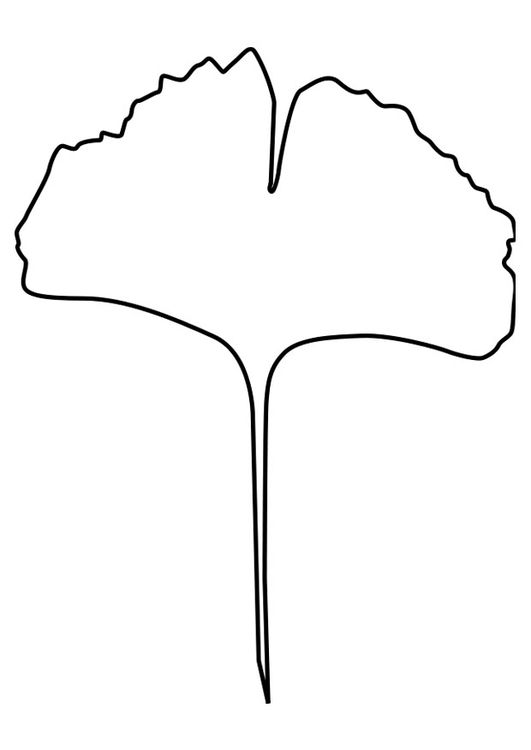 coloring page ginko leaf embroidery patterns coloring pages