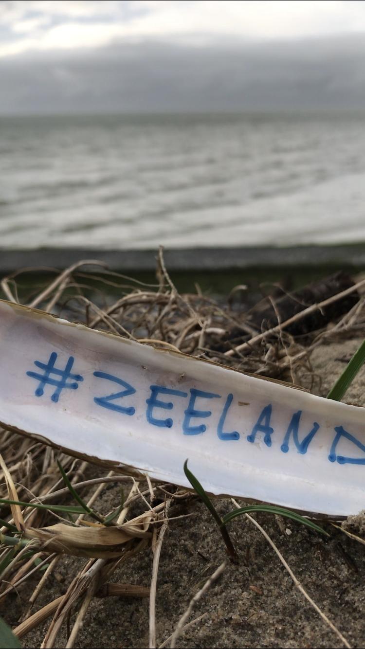 Zeeland Decoratie Strand