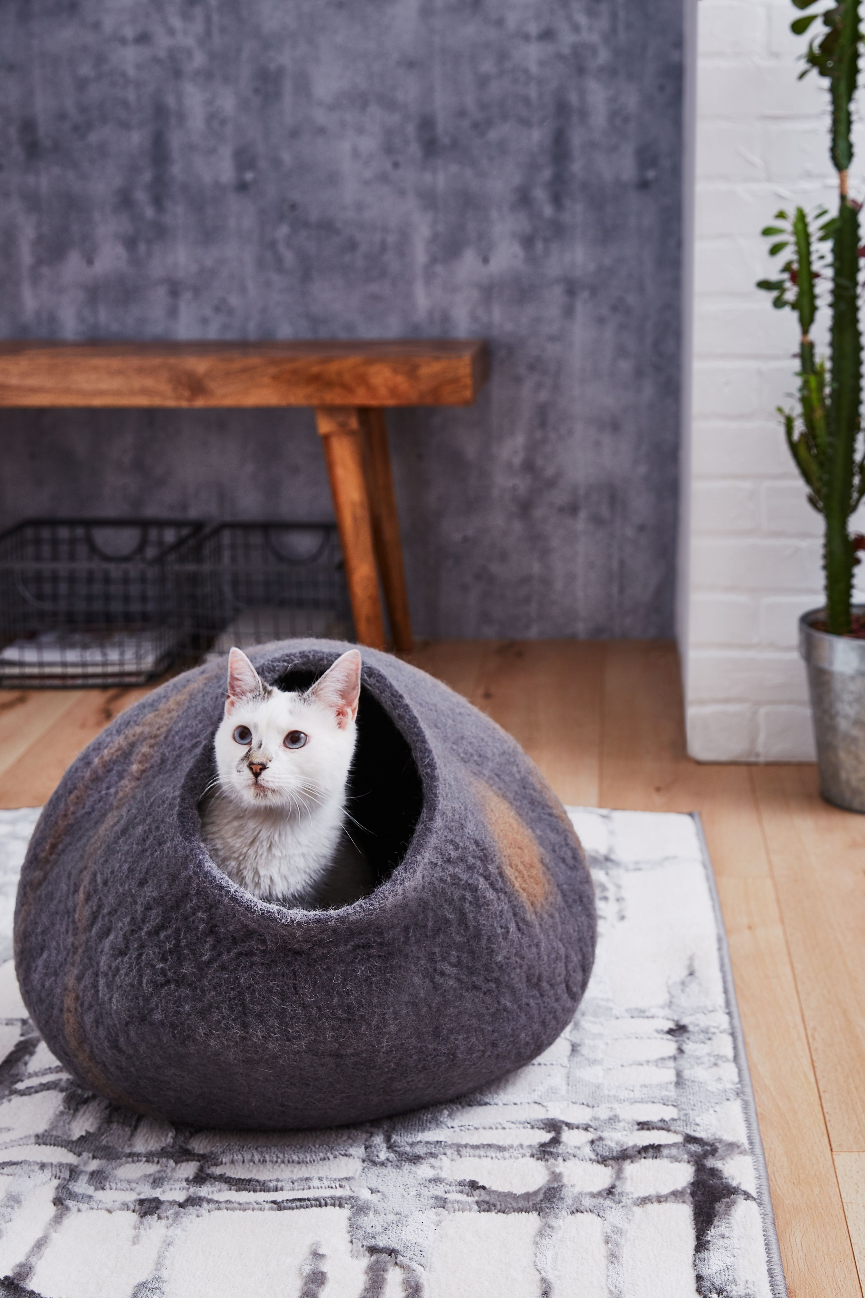 Give your cat the gift of comfort with the Meowfia Premium