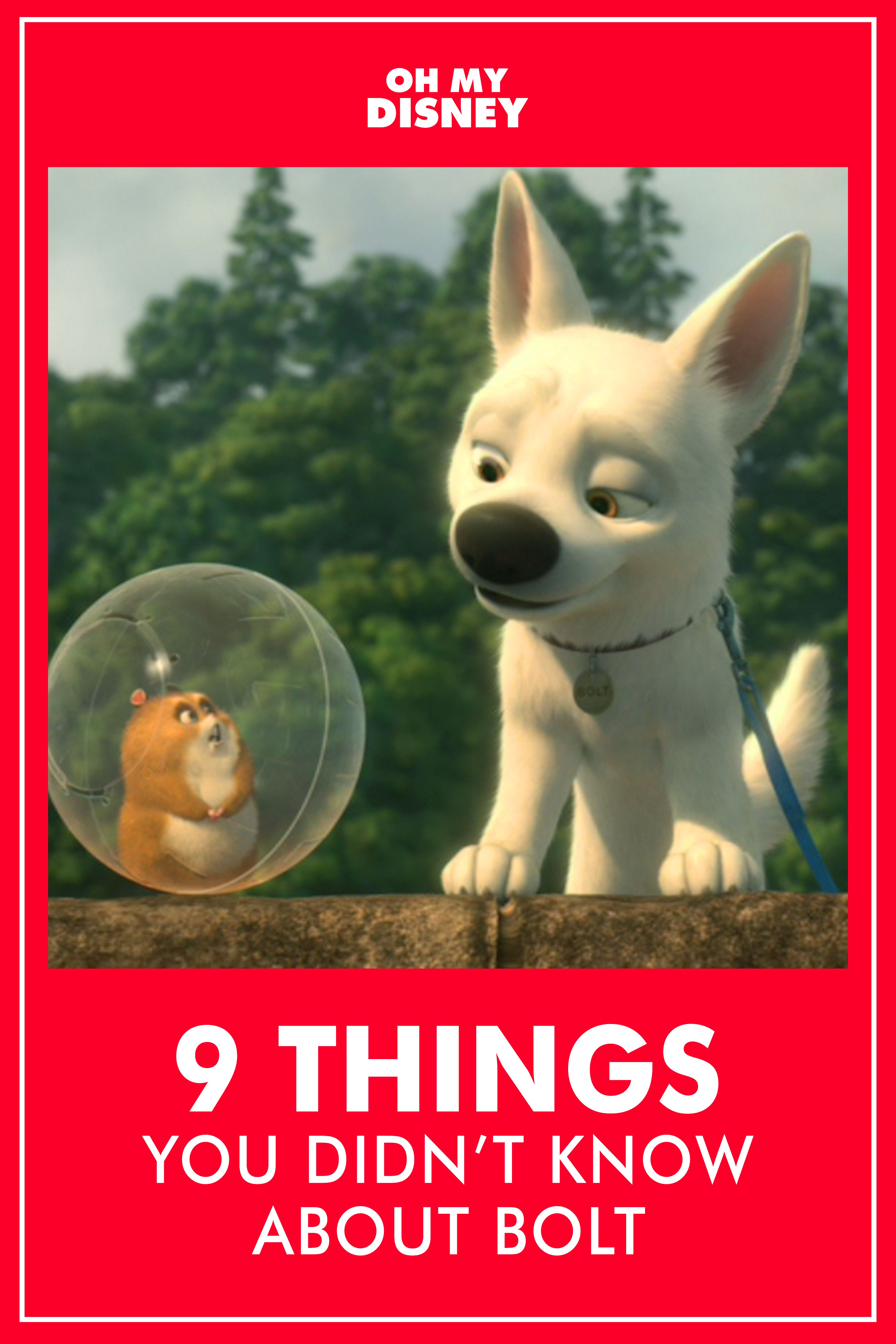 In celebration of one of our favorite Disney dogs, we've compiled a list of 9 facts you might not have known about the film. Are you ready to learn? Get ready for some Disney trivia.