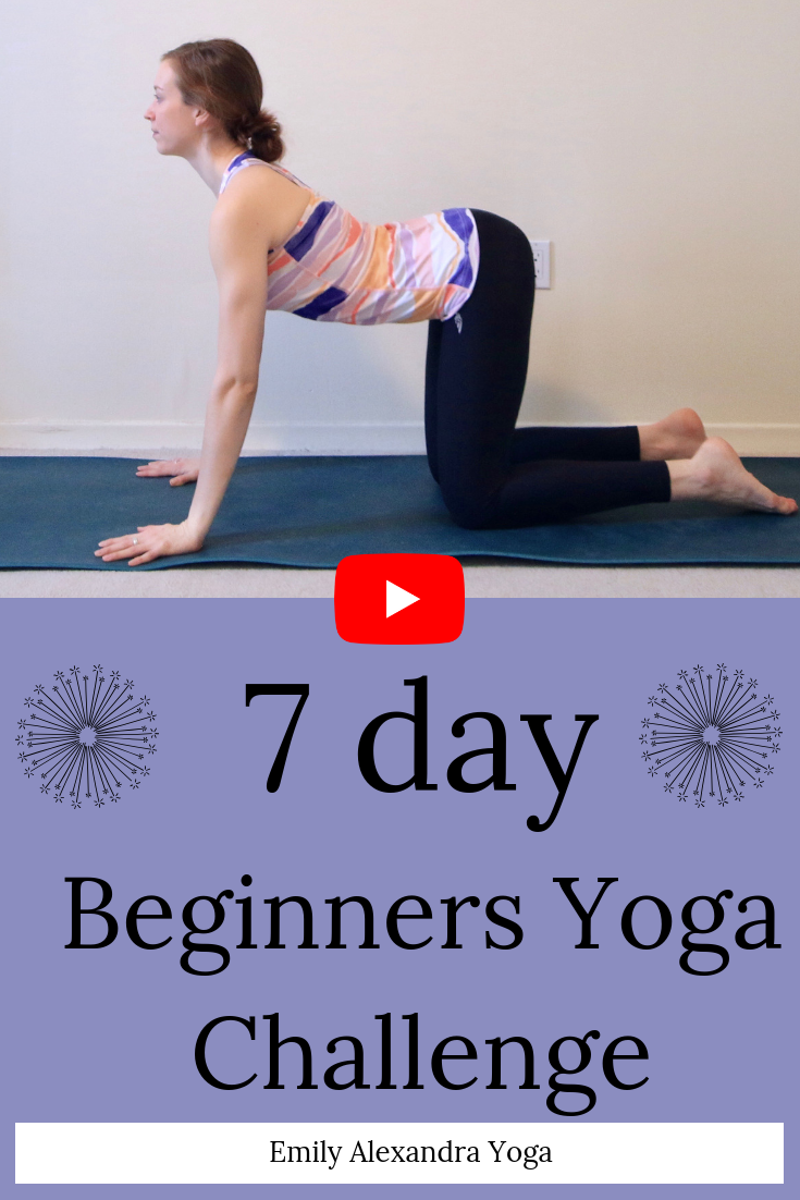 A Free 7 Day Beginner S Yoga Challenge You Will Learn The Most Common Poses In 10 20 Minute O Yoga For Beginners Beginner Yoga Challenge Beginner Yoga Workout