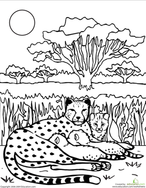 Color The Cheetah Family Worksheet Education Com Coloring Pages Coloring Pages For Kids Detailed Coloring Pages