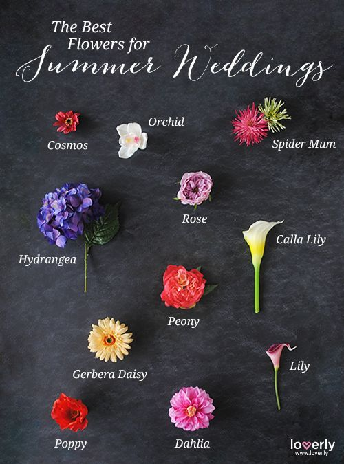 Wedding Tip The Best Flowers For Summer Weddings Get Faux Your