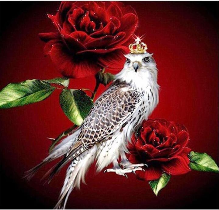 Parrot King Diamond Palentina