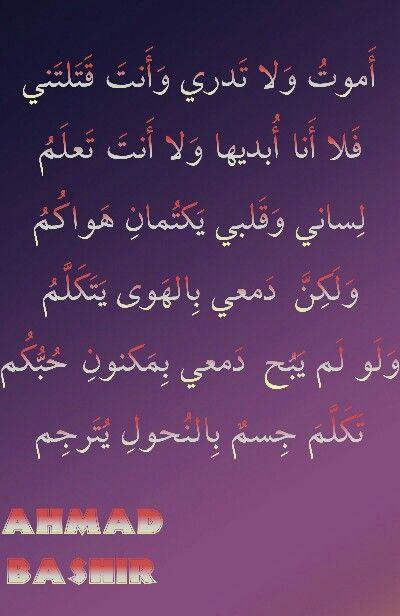 اموت ولا تدري Calligraphy Arabic Calligraphy Poetry