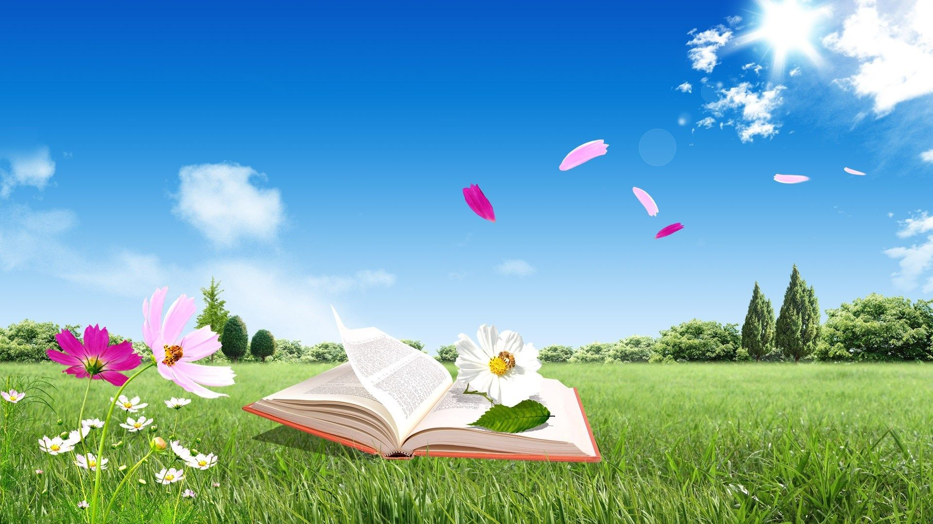 Book Wallpapers Hd Images Download