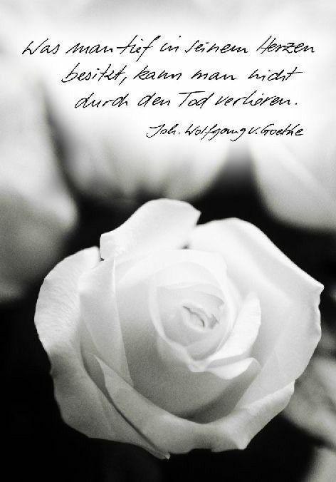 Beileid Beileid Trauer Zitate Sprüche Trauer Und