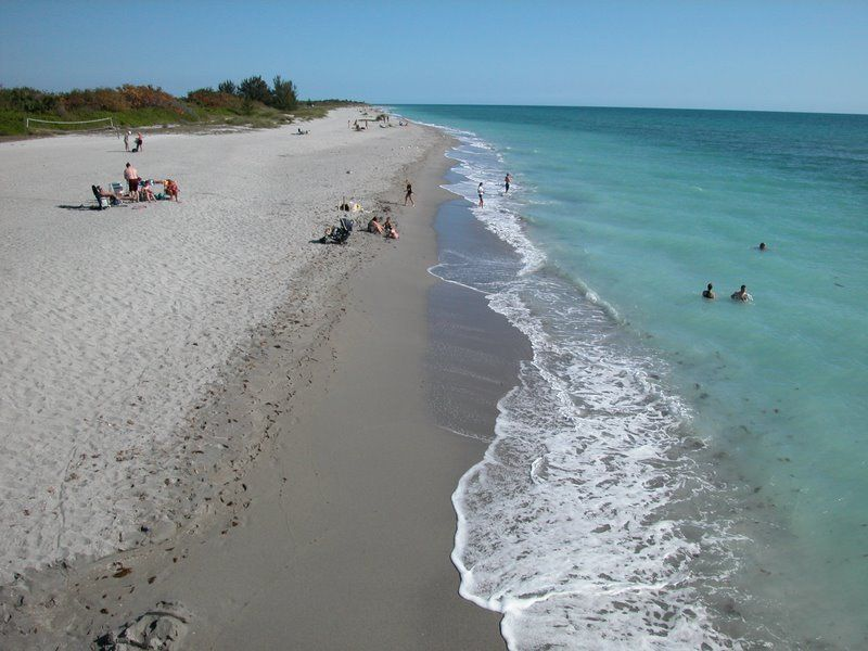 Snorkeling Venice Beach Florida Shark Teeth Are The Main Attraction