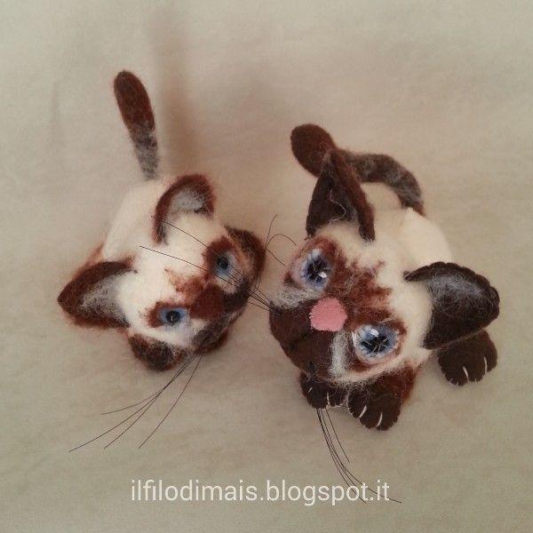 Morbidi gatti siamesi pinterest for Gatti in pannolenci