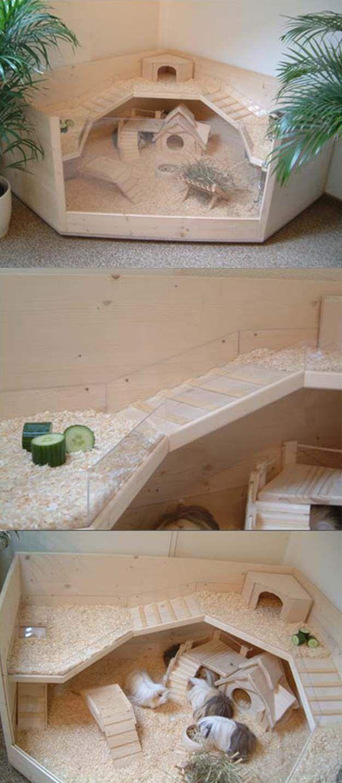 11 diy guinea pig cage ideas diy guinea pig cage oasis for Wooden guinea pig cage