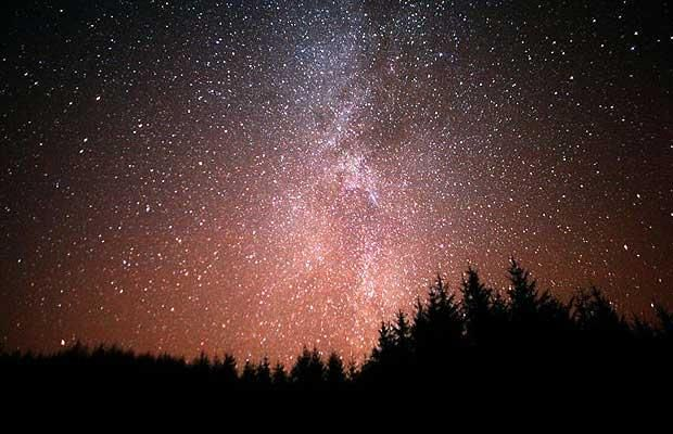 Radio Show Broadcasts Unheard Music In A Remote Forest | Night ...