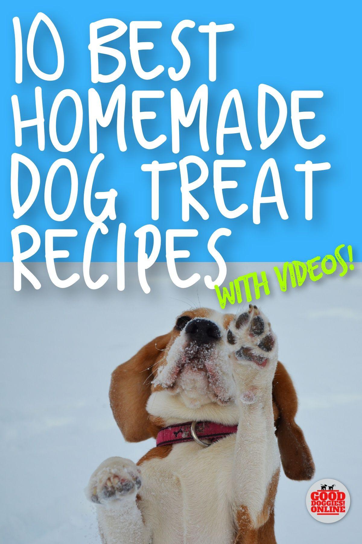 Homemade Dog Treat Recipes Video Help Good Doggies Online Dog Training Homemade Dog Your Dog