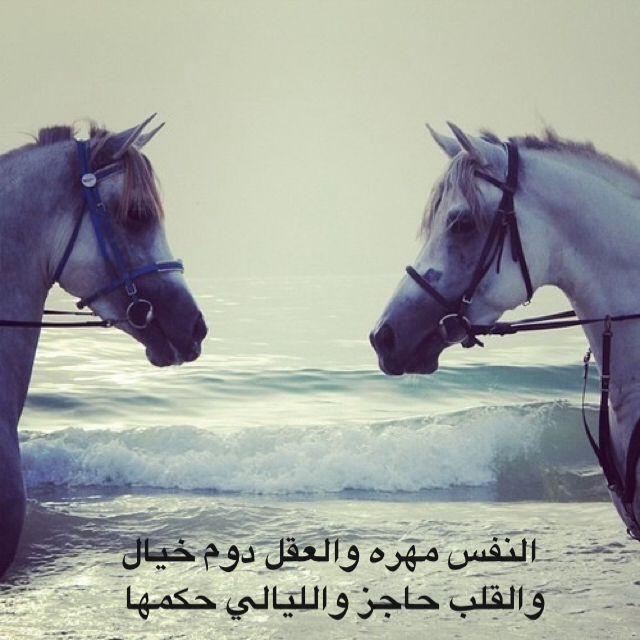 النفس مهره والعقل دوم خيال والقلب حاجز والليالي حكمها Arabic Funny Photo Quotes Strong Quotes