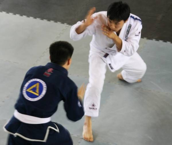 Mixed Martial Arts Games: How To Train Specific Energy Systems To Improve Your BJJ