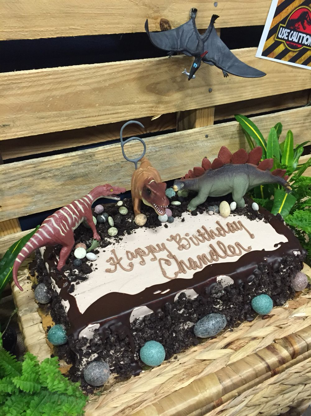 Dinosaur cake oreo cake from publix without whole cookies
