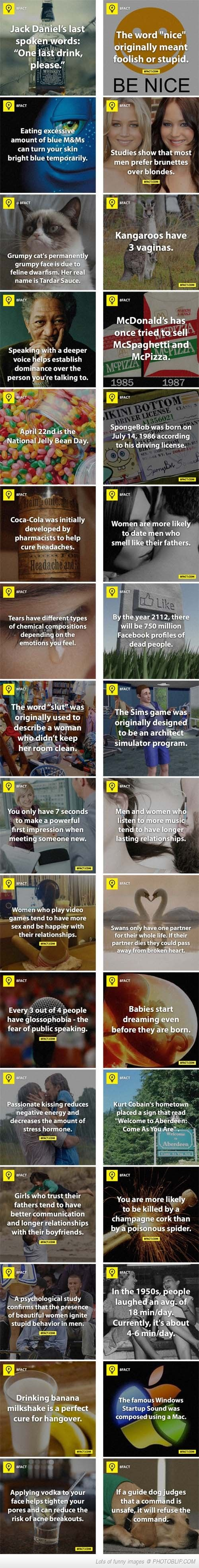 30 Facts… Embrace the random knowledge | Quotes | Pinterest ...
