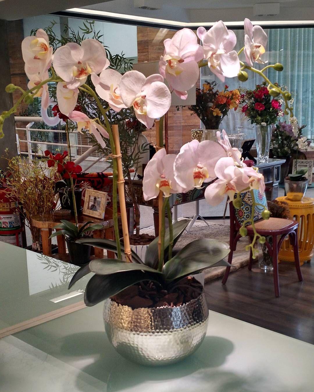 More Decoration : http://www.kadinika.com Arranjo de orquídea branca em cachepot de alumínio batidinho. Presente especial para uma noiva especial!! #orquidea #orchid #flores #flowers #cachepot #arranjos #decoração #decoration #decor #interiores #interiordesign #homedecor