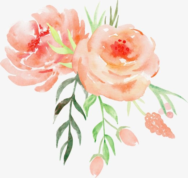 Illustration Lace Elements,Romantic Watercolor Flowers
