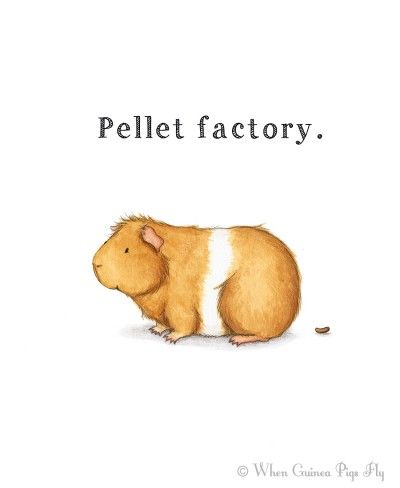 Pellet factory guinea pig art print by When Guinea Pigs Fly