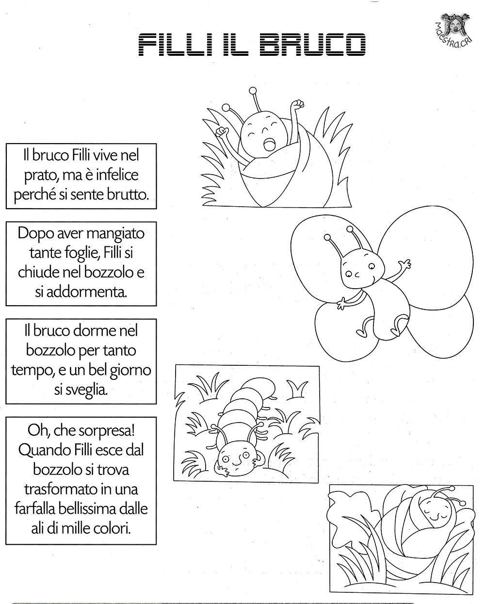 Farfalla lavori sulla primavera pinterest scuola for Immagini da colorare bruco