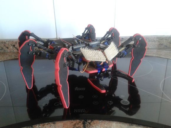 A Low Cost 2-DOF Hexapod