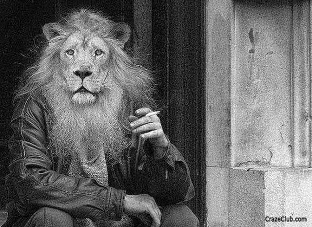 eyaculación precoz leon y