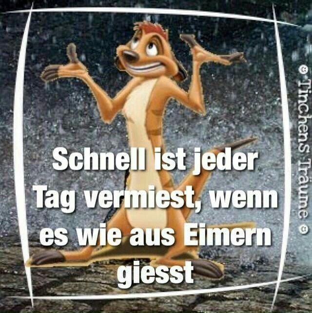 Pin Von Rudolf Kungel Auf Hallo Tag Regen Bilder Lustig Lustige Spruche Regen Spruche