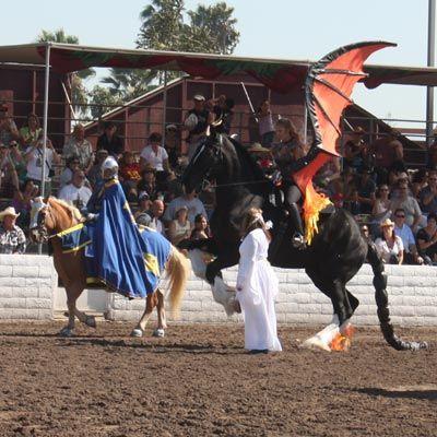 Draft Horse Village :: View topic - 2008 Pomona Draft ...