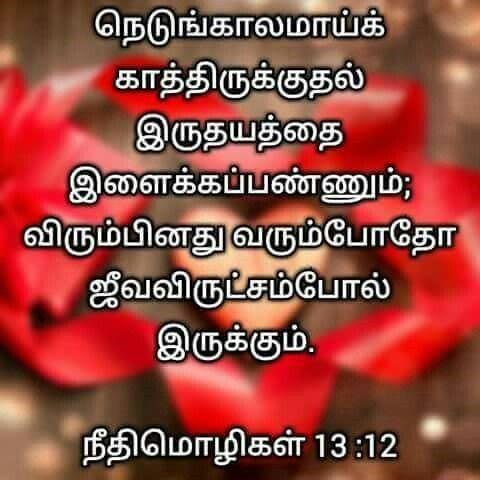Pin By Jamila Rani On Tamil Bible Verse Bible Words Bible