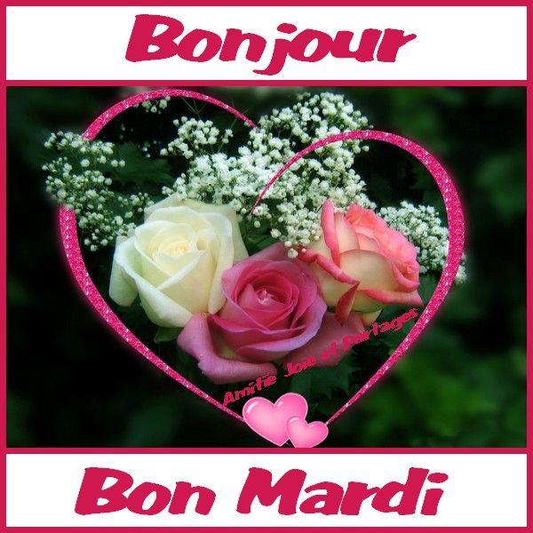Bonjour Bon Mardi Bonnesoiree Bon Mardi Fleurs Fleuriste