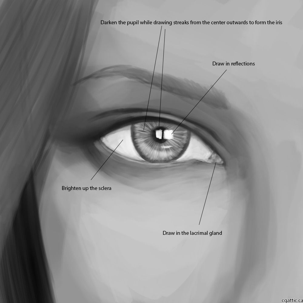 how to draw a nose using common geometric shapes to form a