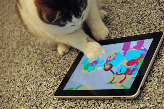 SPCA L.A.'s Shelter Cats Get Their Art On Yahoo Shine